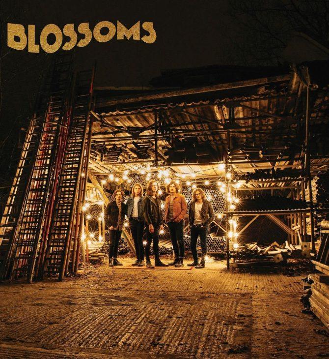 blossoms album rock