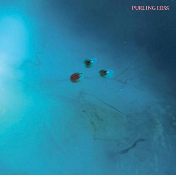 purling-hiss-album-rock